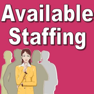 AvailableStaffing.com For Sale on eBAy