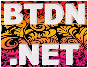 BTDN.NET - Rare 4 Letter Domain Name for Sale on eBay